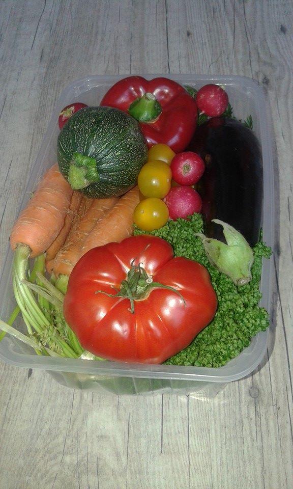 Panier légumes lidl